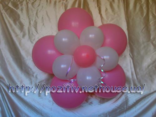 Фотогалерея - Цветы из воздушных шаров. Букеты из шариков на день рождения, на выписку из роддома.